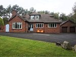 Thumbnail for sale in Dromore Road, Hillsborough