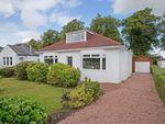 Thumbnail to rent in Douglas Avenue, Elderslie, Renfrewshire