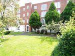 Thumbnail to rent in Freshwood Way, Wallington