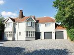 Thumbnail for sale in Stortford Road, Hatfield Heath, Bishop's Stortford, Herts