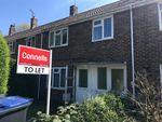 Thumbnail to rent in Montfort Close, Canterbury
