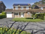 Thumbnail to rent in Oakenbrow, Sway, Lymington