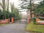 Thumbnail to rent in Hampton Lane, Solihull