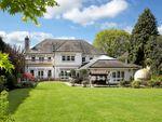Thumbnail for sale in Shrubbs Hill Lane, Ascot, Berkshire