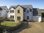 Thumbnail for sale in The Conifers, Myreriggs Road, Coupar Angus, Blairgowrie