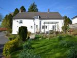 Thumbnail to rent in Capel Dewi, Carmarthen