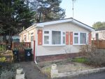 Thumbnail to rent in Ringwood Road, St. Ives, Ringwood