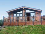 Thumbnail for sale in Lodge 4, Barstobrick Ridge, Ringford, Castle Doulgas