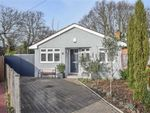 Thumbnail for sale in Lynton Road, Hadleigh, Essex