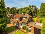 Thumbnail to rent in Pyrford, Surrey