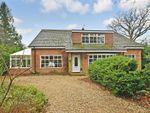 Thumbnail for sale in Woodmancote Lane, Woodmancote, Emsworth, Hampshire