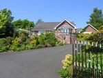 Thumbnail to rent in Blaeberry Hill, Rothbury, Morpeth