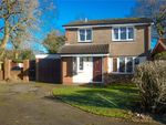 Thumbnail to rent in Penda Grove, Perton, Wolverhampton, Staffordshire