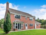 Thumbnail for sale in Abergavenny Gardens, Copthorne, Crawley