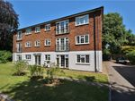 Thumbnail to rent in Lower Edgeborough Road, Guildford, Surrey