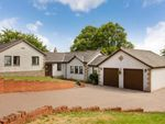 Thumbnail for sale in Norwood Avenue, Alloa, Clackmannanshire