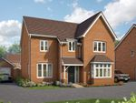 """Thumbnail to rent in """"The Birch"""" at Wells Road, Edwalton, Nottingham"""