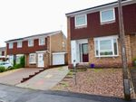 Thumbnail to rent in Cypress Close, Stafford