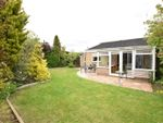 Thumbnail for sale in Hickling, Hoveton Close, King's Lynn, Norfolk