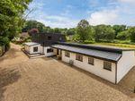Thumbnail to rent in Birchwood Lane, Chaldon