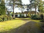 Thumbnail to rent in Curley Hill Road, Lightwater, Surrey