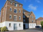 Thumbnail to rent in Poplar Close, Bexhill-On-Sea