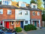 Thumbnail to rent in Laurence Hamilton Lane, Ashford