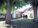 Thumbnail to rent in Bishops Wood, Woking