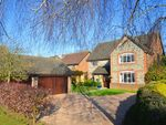 Thumbnail to rent in Northumberland Gardens, Bickley, Bromley