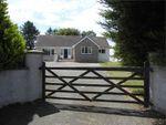 Thumbnail for sale in Avalon, Dwrbach, Fishguard, Pembrokeshire