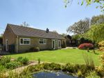 Thumbnail for sale in Great Heath Road, North Elmham, Dereham