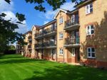 Thumbnail for sale in Elliotts Way, Caversham, Reading