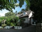 Thumbnail for sale in West Looe Hill, West Looe, Cornwall