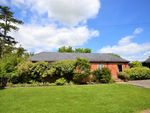 Thumbnail to rent in Whitensmere Farm, Whitensmere Farm, Camps Road