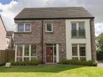 Thumbnail for sale in 10, Woodbrook Walk, Lisburn