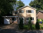 Thumbnail to rent in Tern Grove, Loggerheads, Market Drayton