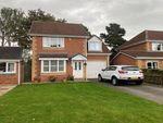 Thumbnail to rent in Smithsons Grove, Boroughbridge, York