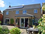 Thumbnail to rent in Collins Close, Saxmundham