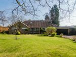Thumbnail for sale in Long Walk, Chalfont St. Giles
