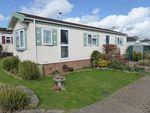 Thumbnail to rent in Dengrove Park, Shalloak Road, Broad Oak, Canterbury, Kent