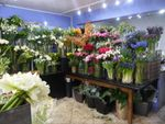 Thumbnail for sale in Florist HD3, Lindley, West Yorkshire