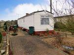 Thumbnail to rent in Kingsmead, Thornlea Park, Wick, Littlehampton