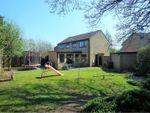 Thumbnail for sale in Stenigot Close, Doddington Park