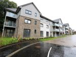 Thumbnail to rent in Knights Grove, Newton Mearns, Glasgow