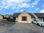 Thumbnail to rent in Elmbrook, Llys Y Crofft, Whitland, Sir Gaerfyrddin