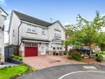 Thumbnail to rent in Grahamfield Place, Beith