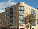 Thumbnail to rent in Coombe Road, Brighton