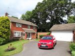 Thumbnail for sale in Foresters Close, Glenfield, Leicester