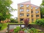 Thumbnail to rent in St. Winifreds Road, Bournemouth