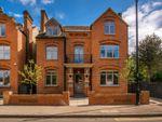 Thumbnail to rent in Harold Road, Crystal Palace